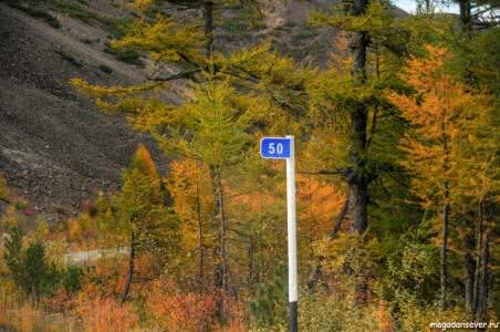 Тенькинская трасса 50 км, осень