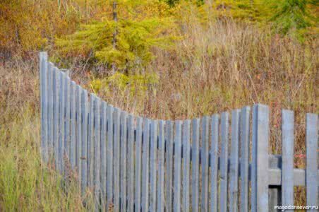 Забор